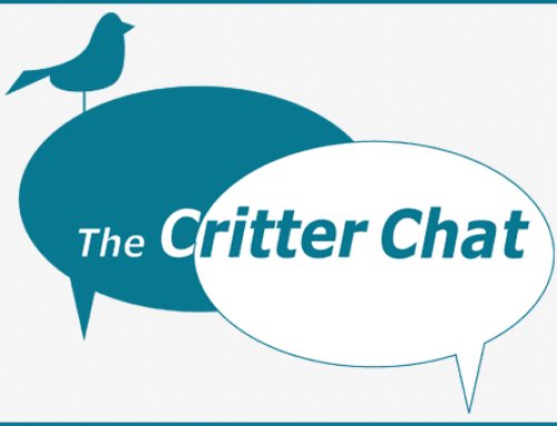 Critter Chat: They Don't Walk Themselves